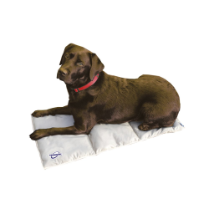 TECHNICHE PHASE CHANGE DOG PAD
