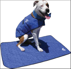 Canine Cooling Products